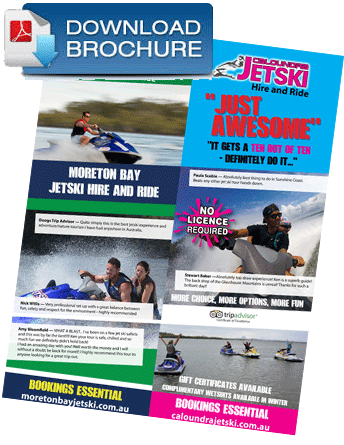 brochure download web